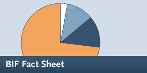 BIF - Fact Sheet