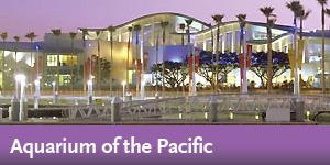 Aquarium of the Pacific Long Beach - Destination Discount